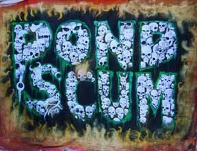pond-scum-image-11_07